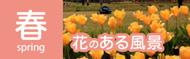 春の花のある風景